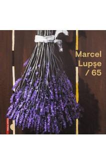 MARCEL LUPŞE / 65